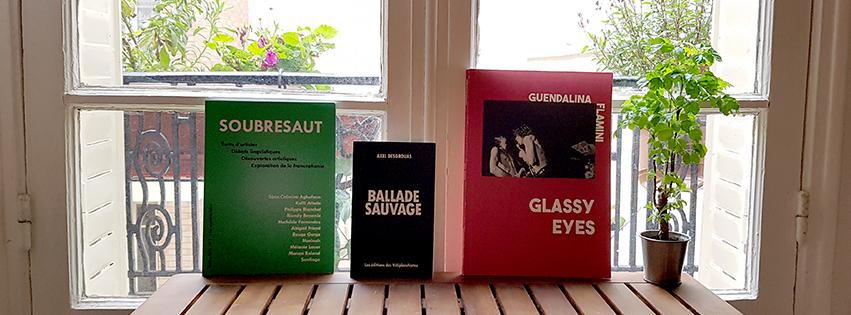 Livres des éditions des véliplanchistes